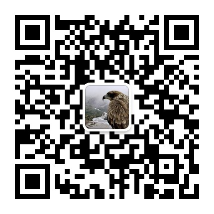 qrcode_for_gh_9bc905a18b12_430.jpg