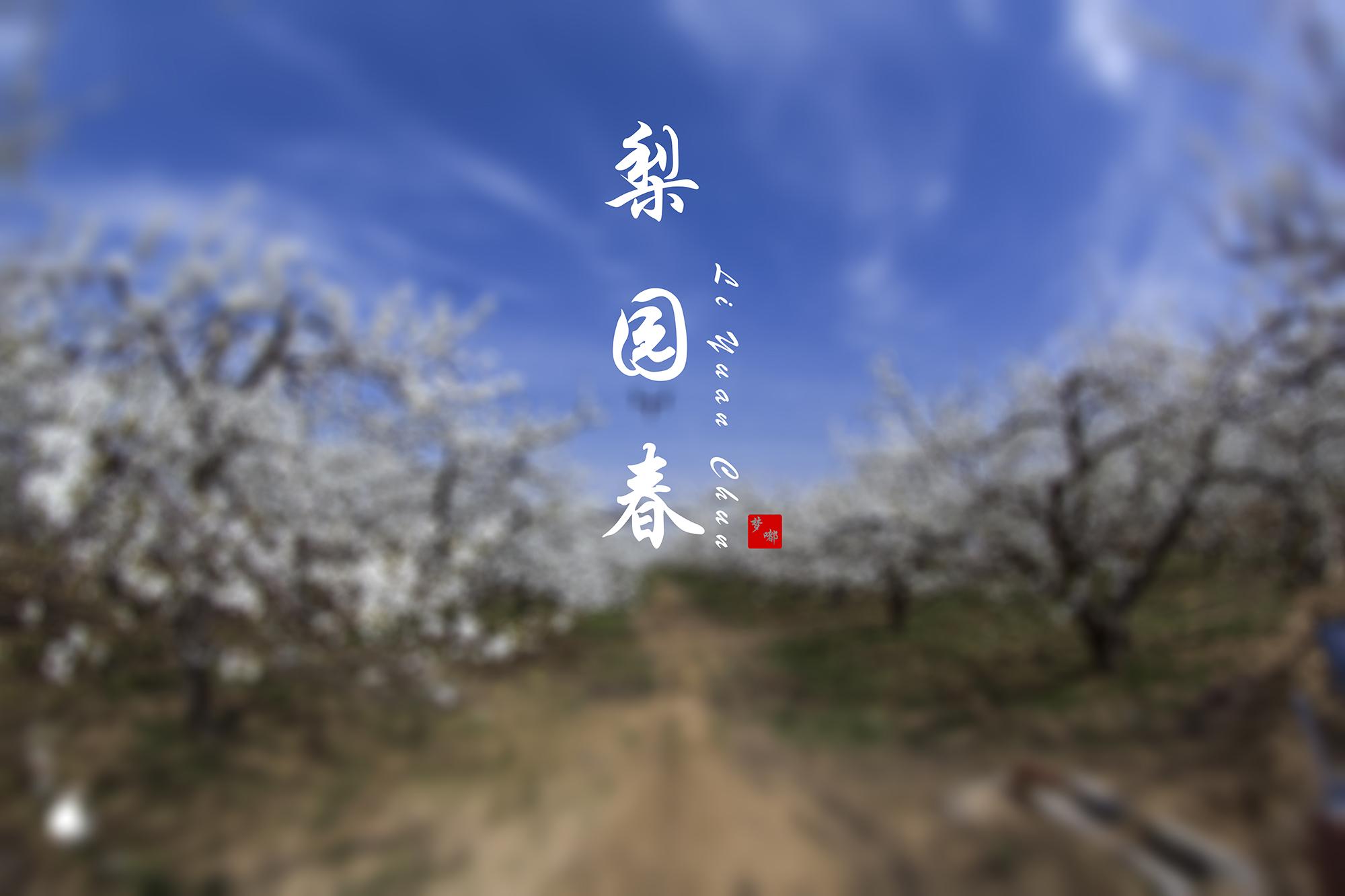 梨园春-2.jpg