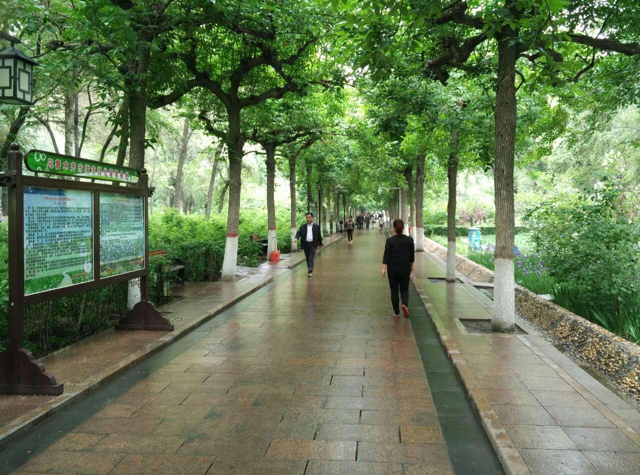 大美新疆-早上的西公园