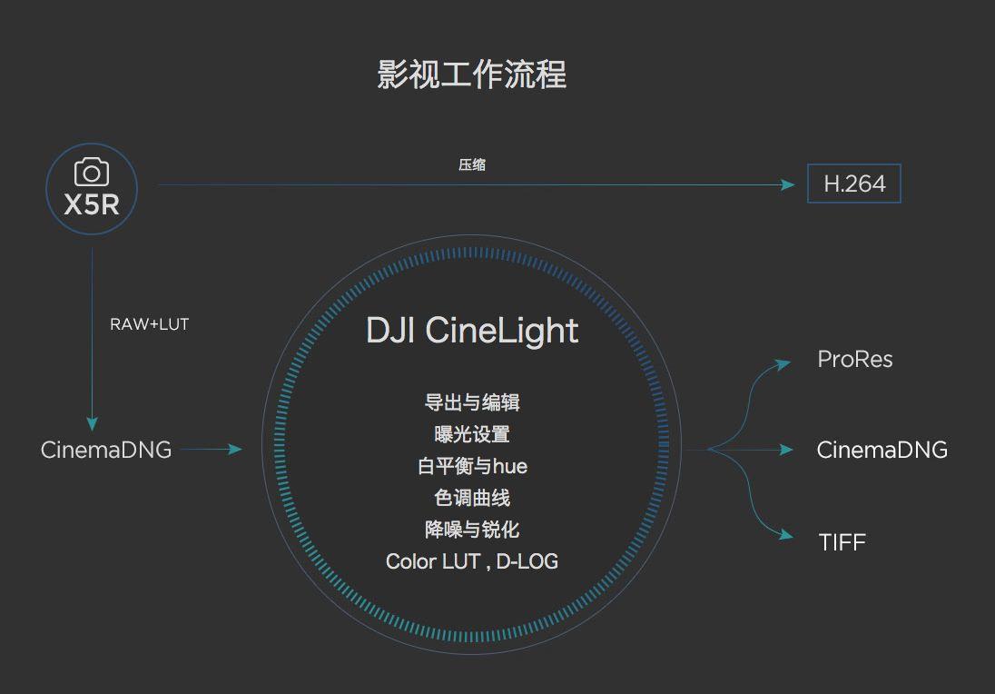 DJI X5R_15.jpeg