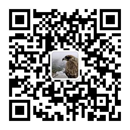154530xx662q9pp86ong2a.jpg