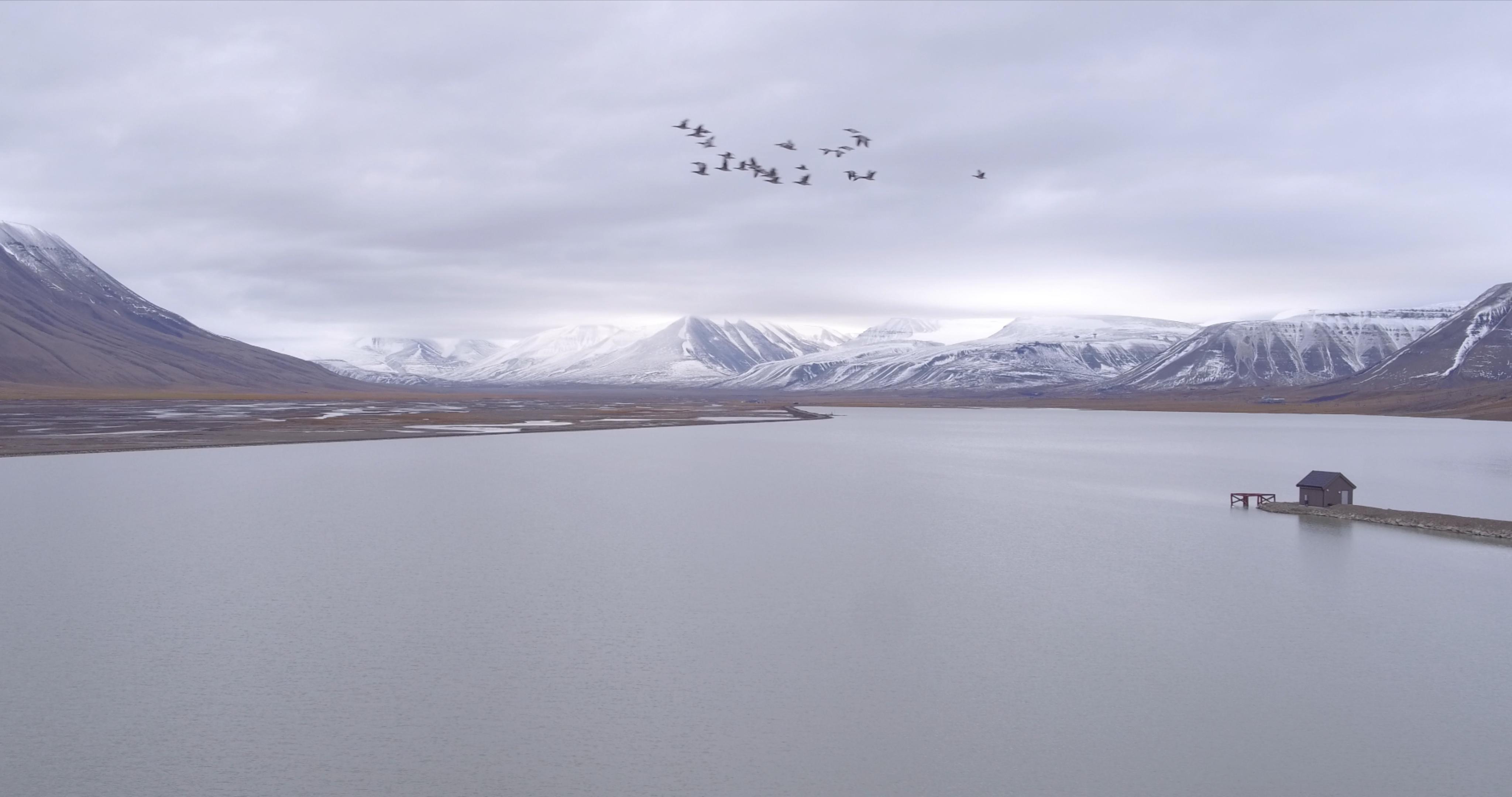 Svalbard3-Chris Schmid_201511519846.jpg