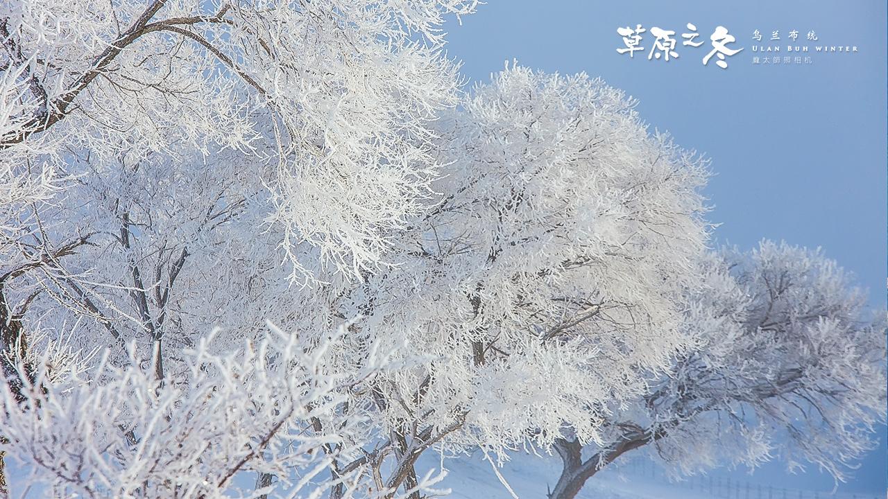 乌兰布统草原之冬720-04.jpg