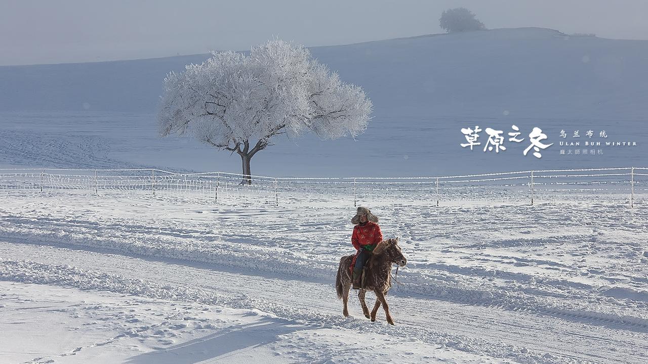 乌兰布统草原之冬720-05.jpg