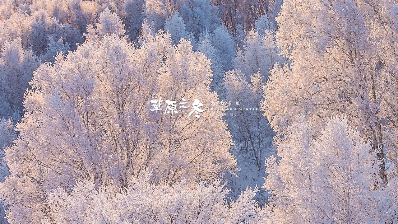 乌兰布统草原之冬720-06.jpg