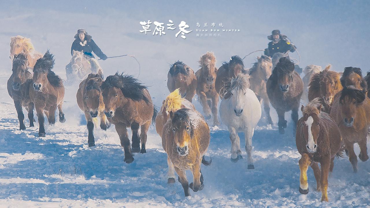 乌兰布统草原之冬720-07.jpg
