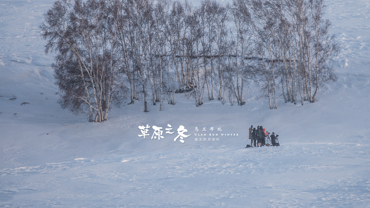 乌兰布统草原之冬720-28.jpg