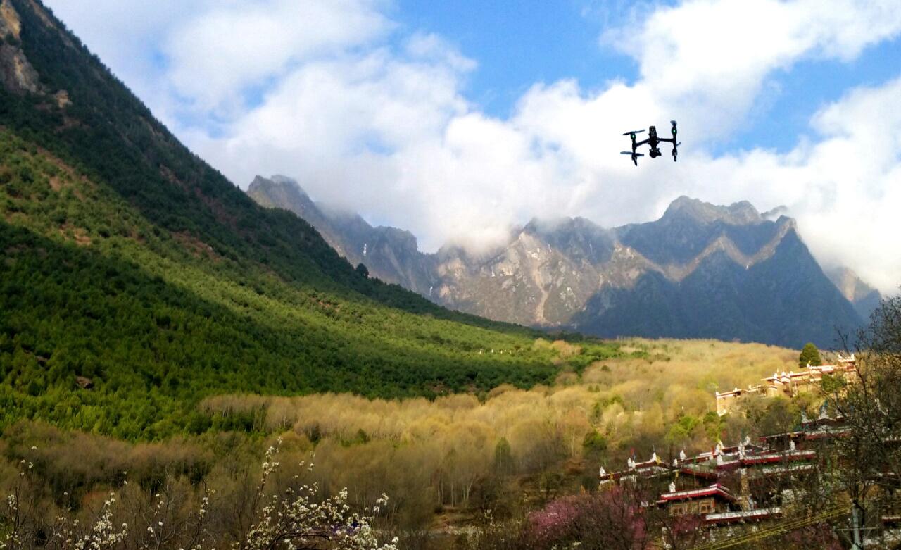 20160321甲居藏寨 朝阳下的雪山和森林,春光已明媚,花香自然来。.jpg.jpg