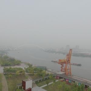 范东-江雾.jpg