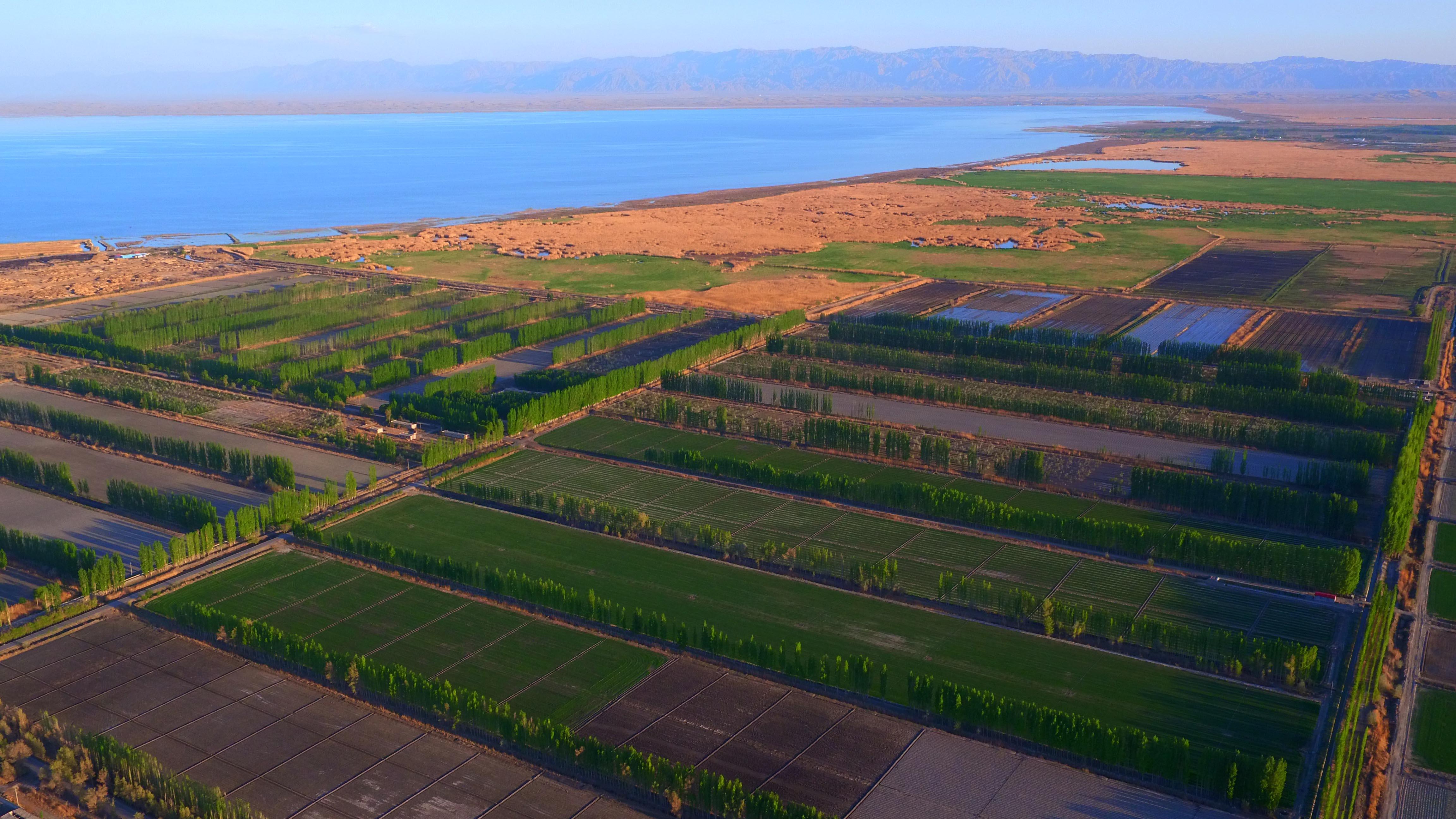 这是2016年4月20日航拍的新疆博斯腾湖情景。