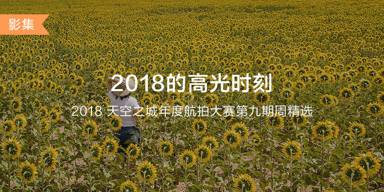 CN-DJIGO大banner-phone-750x375 (7).jpg