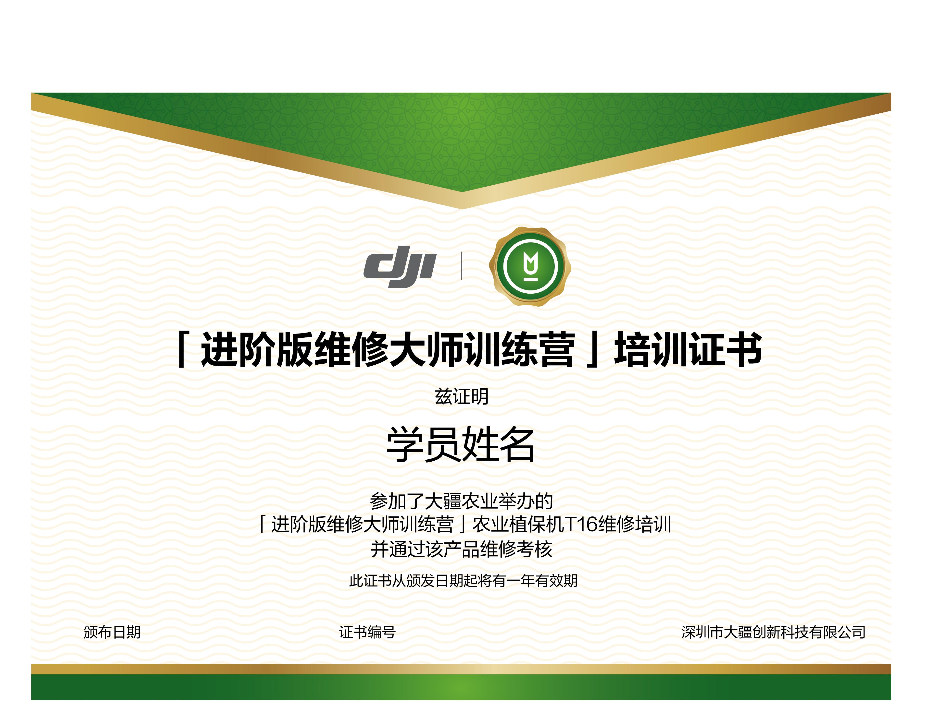 T16进阶版证书.png